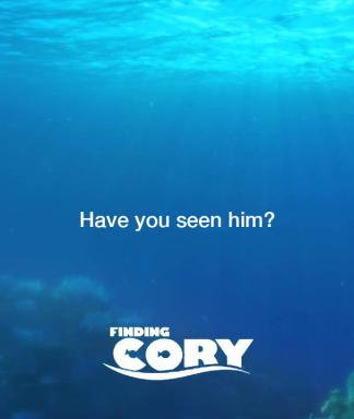 findingcory